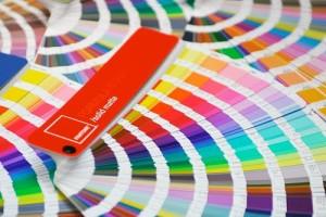 el-color-vende